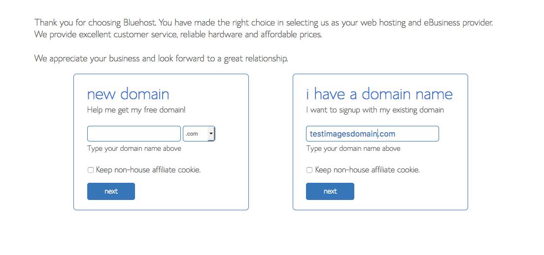 Screenshot of Choose a Domain Page